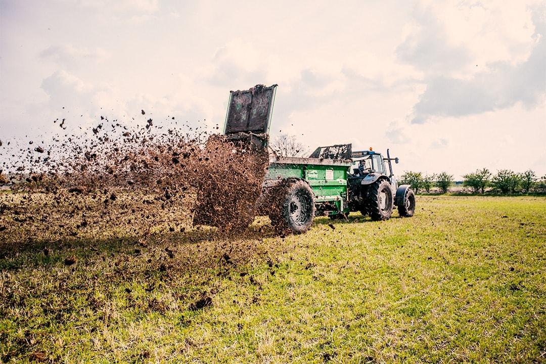 Bunning Muck Spreader Spreading Manure (Lime, Gypsum, Bulk material, manure, Compost)